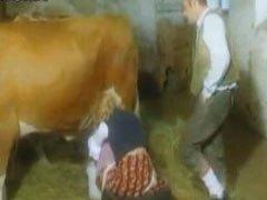 German Milking Business
